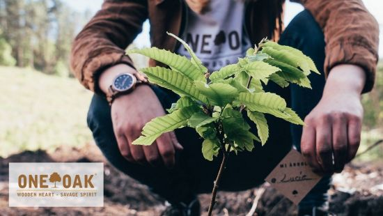 Carbon footprint calculation of watches